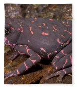 Harlequin Frog Fleece Blanket