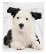 Border Collie Puppy Fleece Blanket