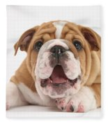 Bulldog Pup Fleece Blanket