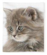 Maine Coon Kitten Fleece Blanket