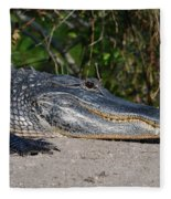 19- Alligator Fleece Blanket