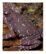 Harlequin Frog Fleece Blanket