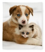 Border Collie And Birman-cross Kitten Fleece Blanket