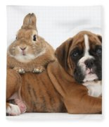 Boxer Puppy And Netherland-cross Rabbit Fleece Blanket