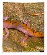 Cave Salamander Fleece Blanket