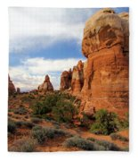 Chesler Park Fleece Blanket