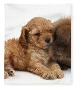 Cockerpoo Puppy And Rabbit Fleece Blanket