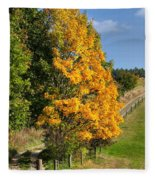 Country Road And Autumn Landscape Fleece Blanket