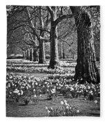 Daffodils In St. James's Park Fleece Blanket