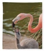Flamingos Fleece Blanket