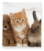 Ginger Kitten With Cavapoo Pup Fleece Blanket