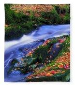 Glenmacnass Waterfall, Co Wicklow Fleece Blanket