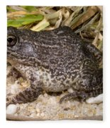 Gopher Frog Fleece Blanket