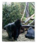 Gorillas Fleece Blanket