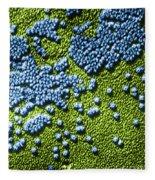 Hepatitis Virus Fleece Blanket