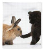 Kitten And Young Rabbit Fleece Blanket