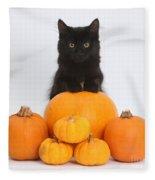 Maine Coon Kitten And Pumpkins Fleece Blanket