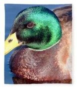 Mallard Drake Portrait Fleece Blanket