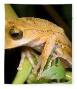 Marsupial Frog Fleece Blanket