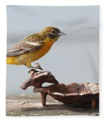 Oriole Fleece Blanket