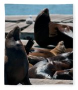 Pier 39 San Francisco Fleece Blanket