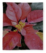 Poinsettia Fleece Blanket