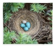Robins Nest And Cowbird Egg Fleece Blanket
