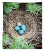 Robins Nest And Cowbird Egg Fleece Blanket