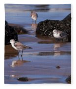 Sanderling Fleece Blanket