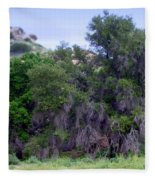 Santa Susana Mountains Fleece Blanket