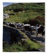 Slea Head, Dingle Peninsula, Co Kerry Fleece Blanket