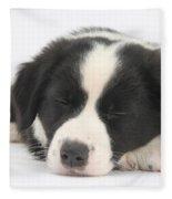 Sleepy Puppy Fleece Blanket