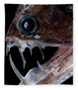 Sloanes Viperfish Fleece Blanket