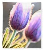 Spring Time Crocus Flower Fleece Blanket