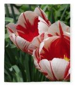 Triumph Tulip Named Carnaval De Rio Fleece Blanket