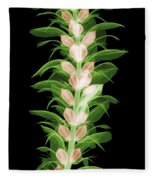 X-ray Of An Acanthus Flower Fleece Blanket