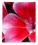 Zonal Geranium Named Candy Fantasy Kiss Fleece Blanket
