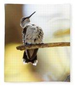 Hummingbird Fleece Blanket