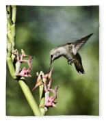 Anna's Hummingbird  Fleece Blanket