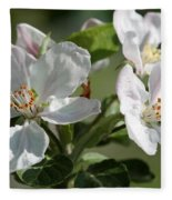 Apple Blossom Fleece Blanket