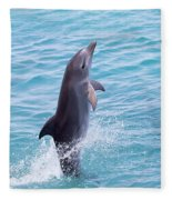 Atlantic Bottlenose Dolphin Fleece Blanket