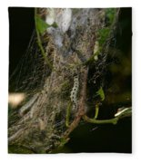 Bird-cherry Ermine Caterpillars Fleece Blanket