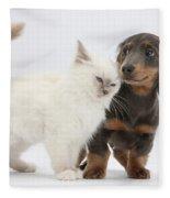 Blue-point Kitten & Dachshund Fleece Blanket
