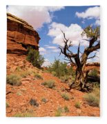 Canyonlands Needles District Fleece Blanket