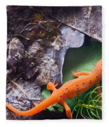 Easterm Newt Nnotophthalmus Viridescens 2 Fleece Blanket