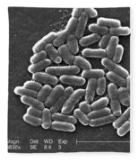 Escherichia Coli O157h7 Bacteria, Sem Fleece Blanket