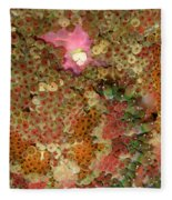 Fluorescent Sea Anemone Fleece Blanket