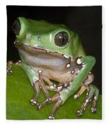 Giant Monkey Frog Fleece Blanket