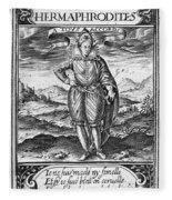 Henry IIi (1551-1589) Fleece Blanket