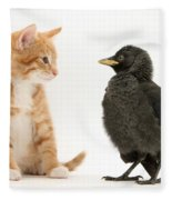 Jackdaw And Kitten Fleece Blanket